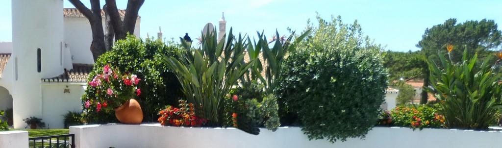 Acacia and Mimosa villas page banner